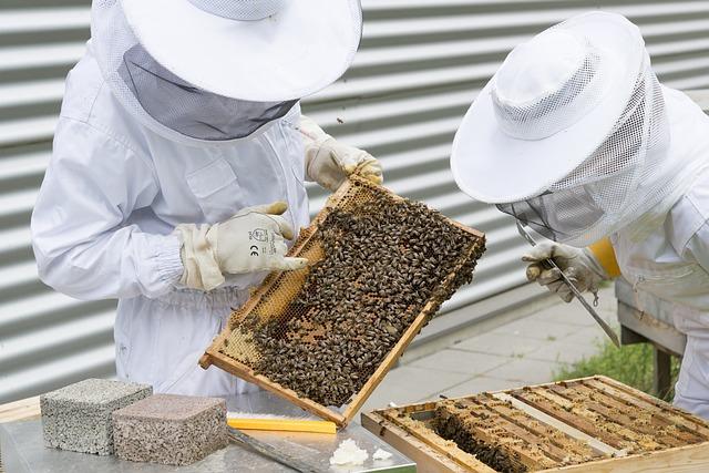 dva včelaři.jpg